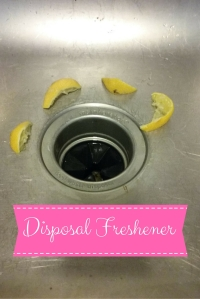 Natural Disposal Freshener @godschicki