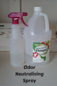 Odor Neutralizing Spray @godschicki
